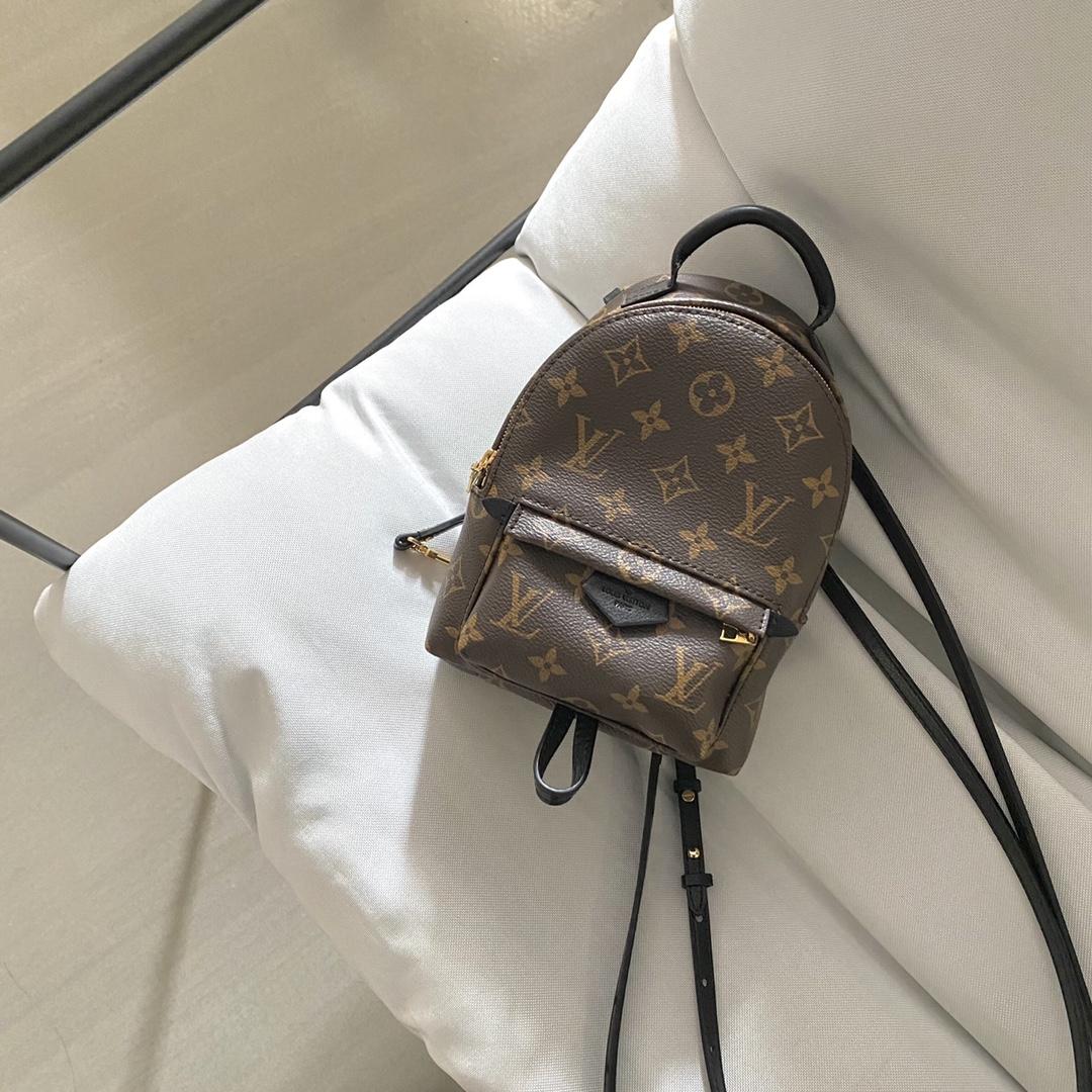 【¥750】LV经典新老花背包小号41565 经典不过时 轻巧柔软